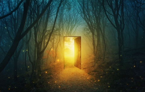 Door in forest