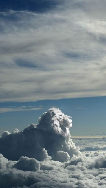 Lion King Cloud